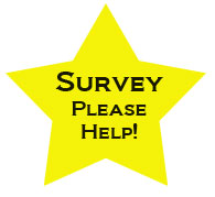 sensory approach survey